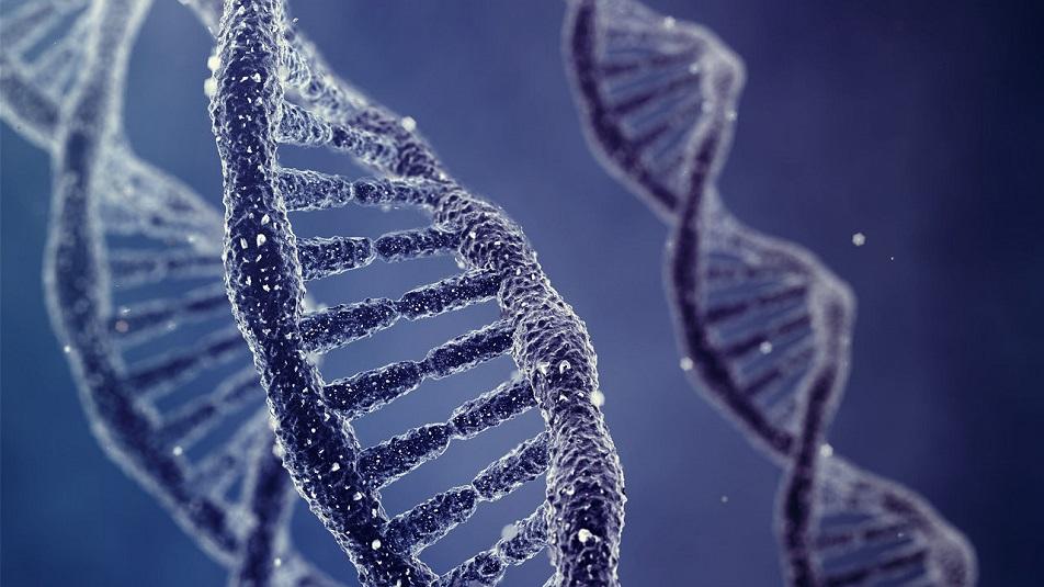 Microsoft sta lavorando all'archiviazione dati su DNA