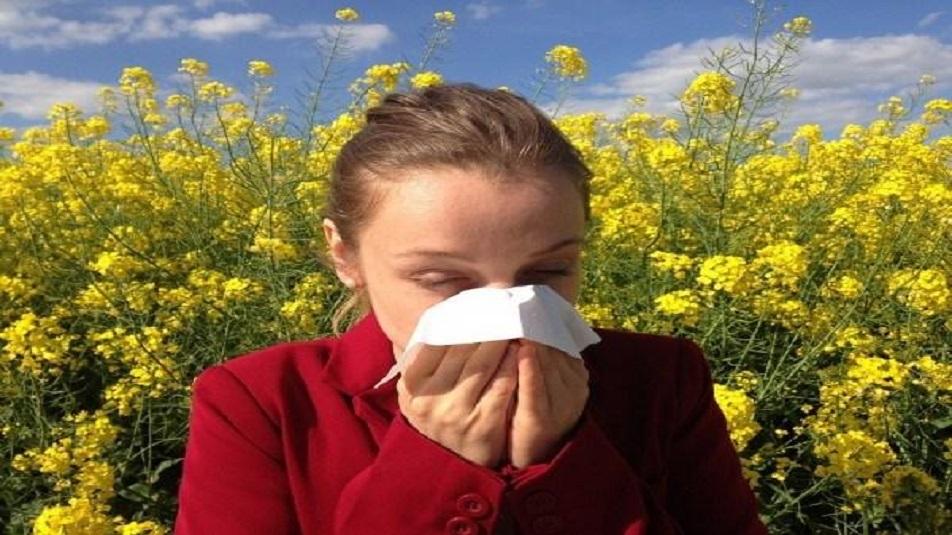 Allergia al polline, sinusite, asma e allergie nasali: ecco come curarle naturalmente