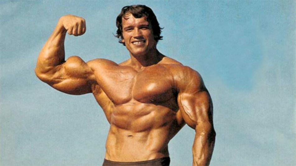 Arnold Schwarzenegger 58220_ppl