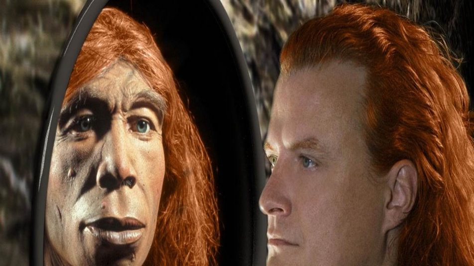 genetica dna 140129-coslog-neander2_3e4f9478e5c6e6e8c892d103b0d268c3.nbcnews-fp-1240-520