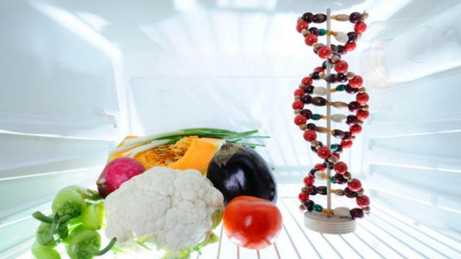 epigenetica cibo-dna_karma