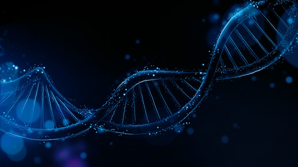 DNA Qumulo_DNA_01