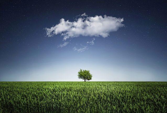 Ordinanza ministero salute 20 marzo 2020 provvedimenti per ambiente ministro Costa