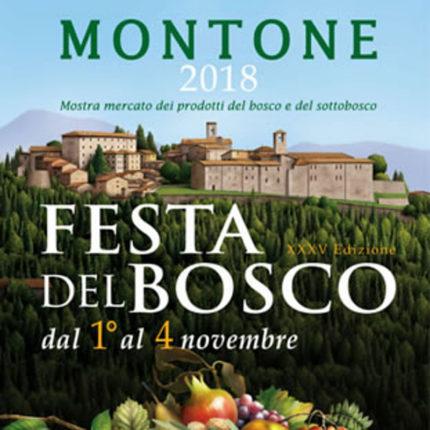 Festa del bosco 2018 a Montone