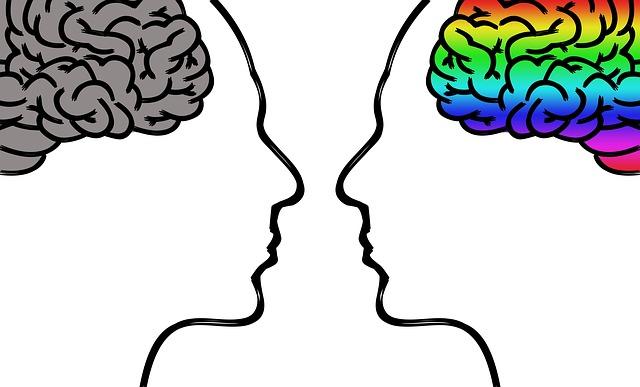 BrainNet comunicazione tra più cervelli