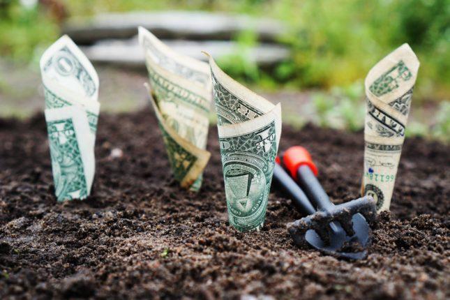 Scegliere il miglior conto deposito è importante: i migliori consigli degli esperti