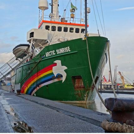 lavorare con greenpeace Italia