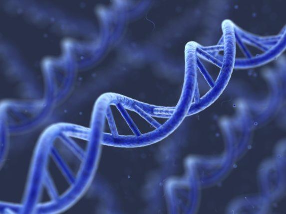 in Cina il secondo bambino con DNA modificato