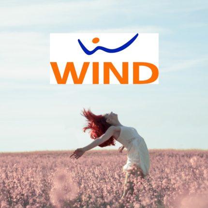 Offerte telefoniche importanti della Wind Wind 40 Fire e 40 Flash