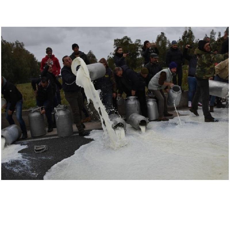 Sardegna: protesta del latte