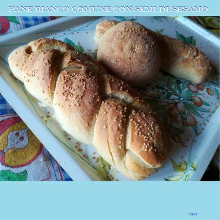 Pane bianco comune