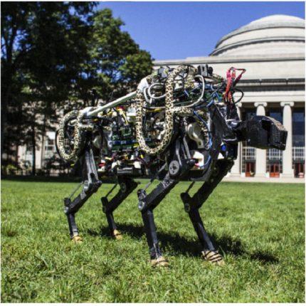 Lo Spettacolare Robot Felino