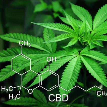 Goodbye Marijuana