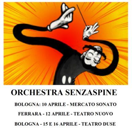 Orchestra Senzaspine Bologna e Ferrara