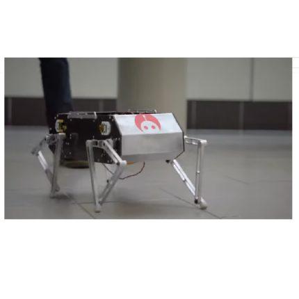 Doggo: il cane robot creato negli USA
