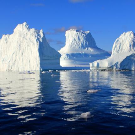 Allarme Ecosistema: l' innalzamento del mare causerà migrazioni di massa