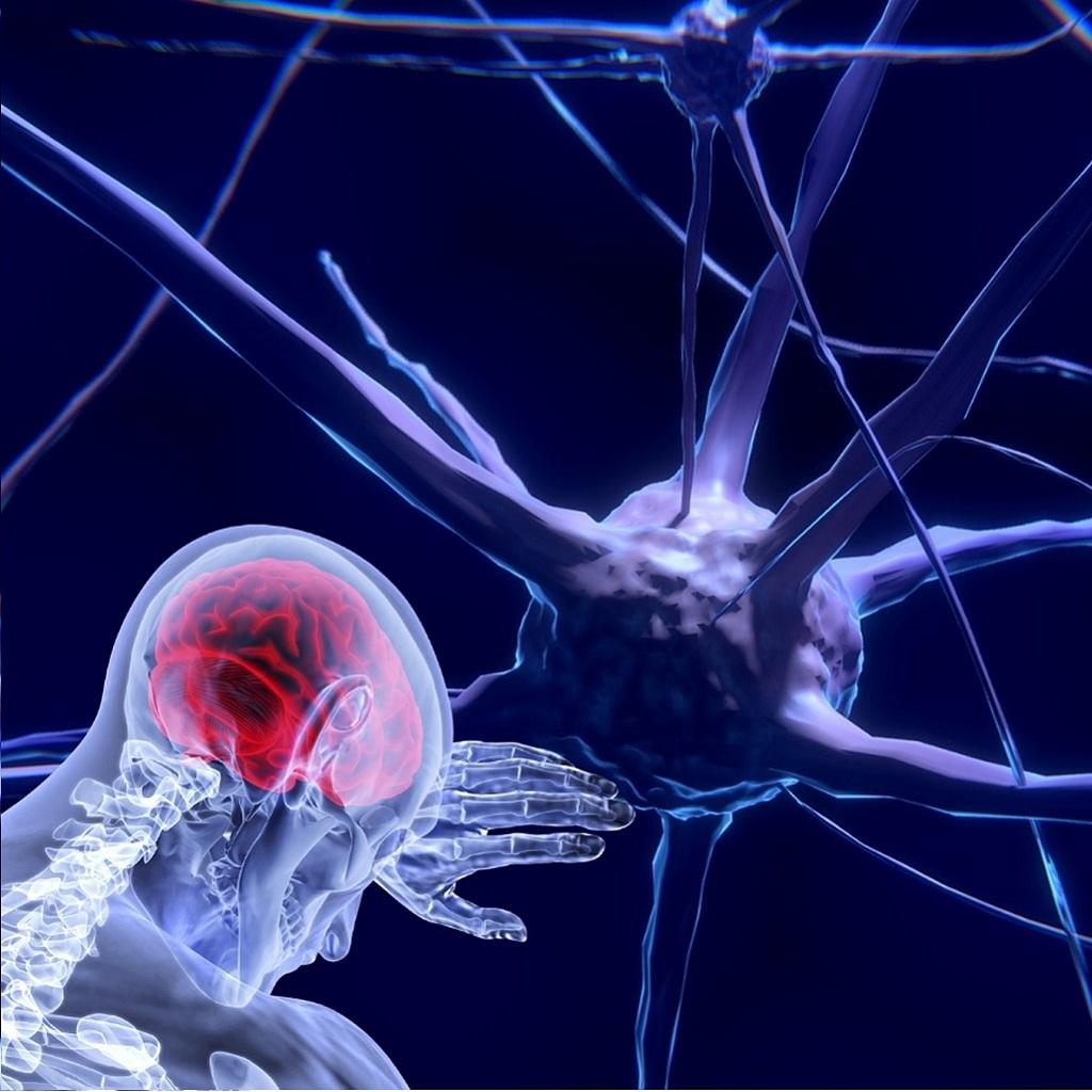 Alzheimer: individuato il meccanismo