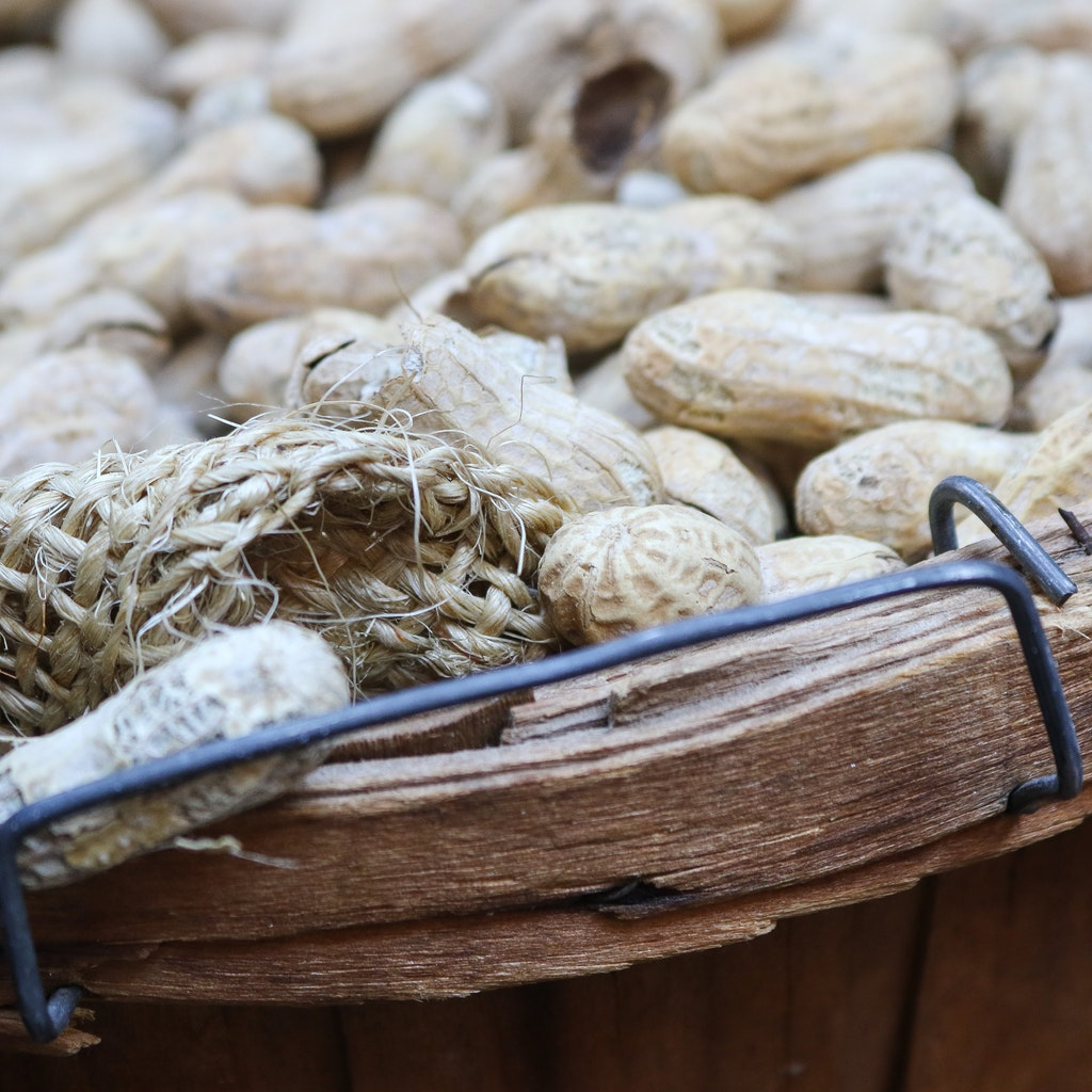 Sequenziato genoma delle arachidi