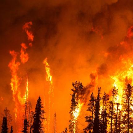Incendi Amazzonia e Bolsonaro