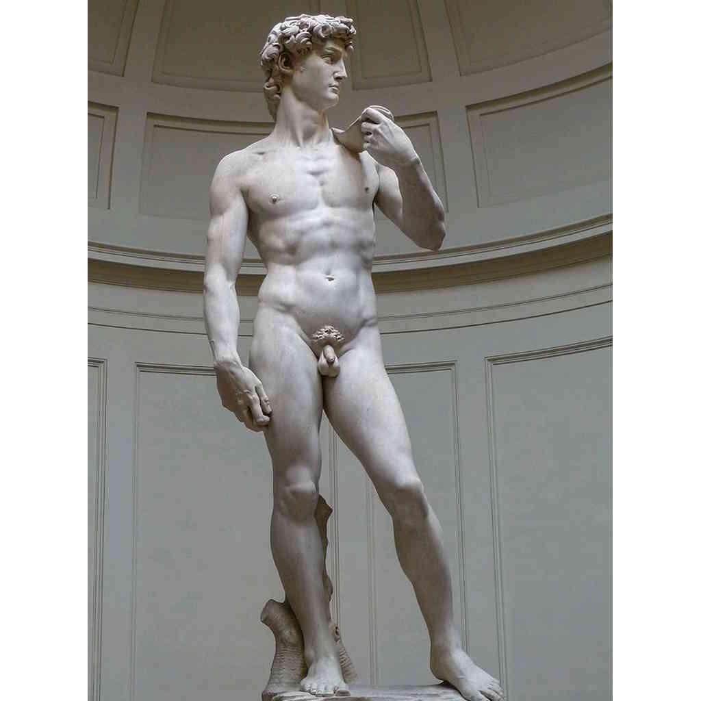 518 anni del David di Michelangelo