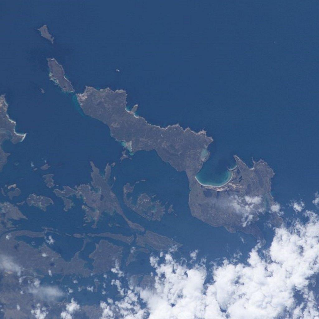 In vendita una delle isole delle Falkland foto