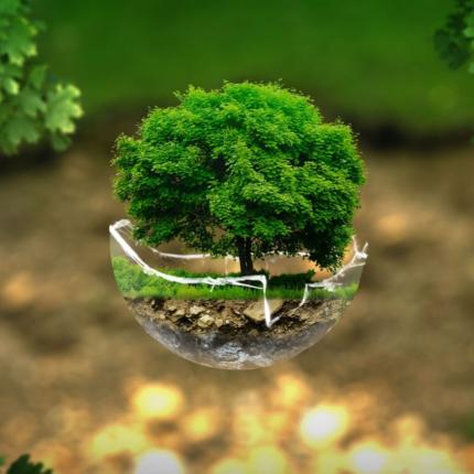 Decreto ambiente fra i primi obiettivi del Governo Conte 2
