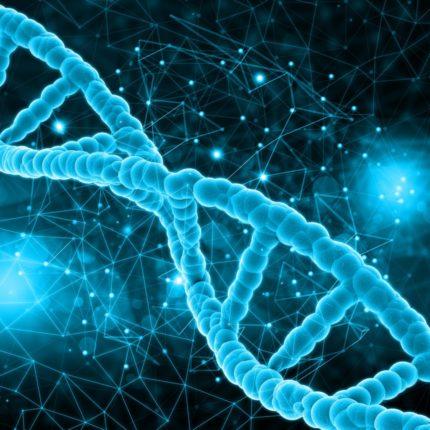 mito del gene gay