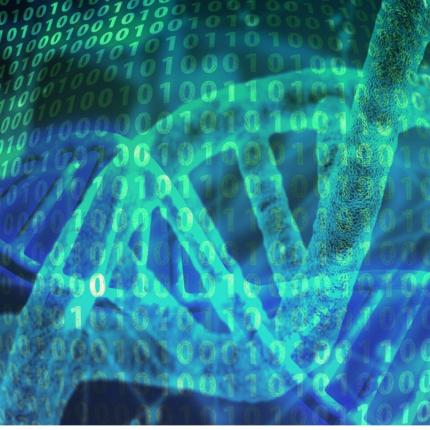 DNA modificato