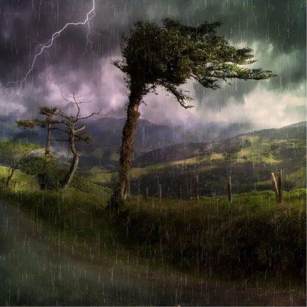 maltempo e danni alla natura