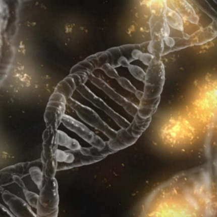 DNA del paziente sostituito