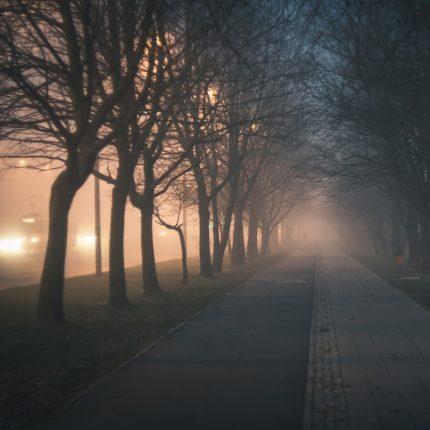 allarme smog in città