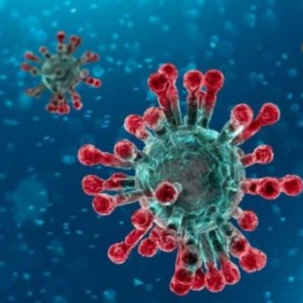 Coronavirus ecco un'inquietante ipotesi