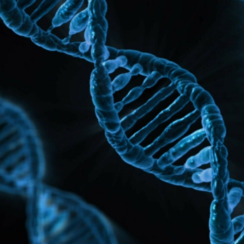 Tecnica di editing CRISPR