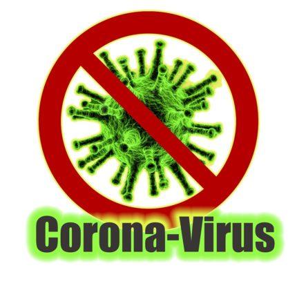 Coronavirus rimpatriato Niccolò dalla Cina foto