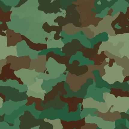 reclutamento straordinario esercito italiano