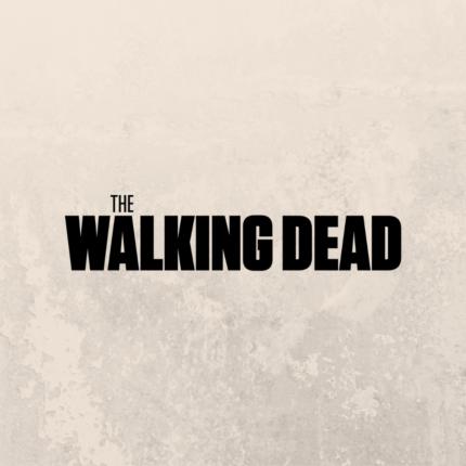 The Walking Dead l'ingresso di un nuovo personaggio