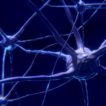 Cura sclerosi multipla