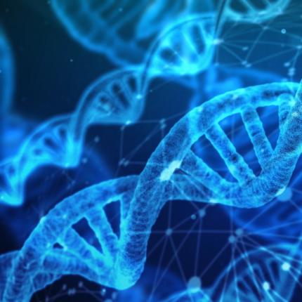 Test ultrasensibile rileva il sussurro del DNA tumorale