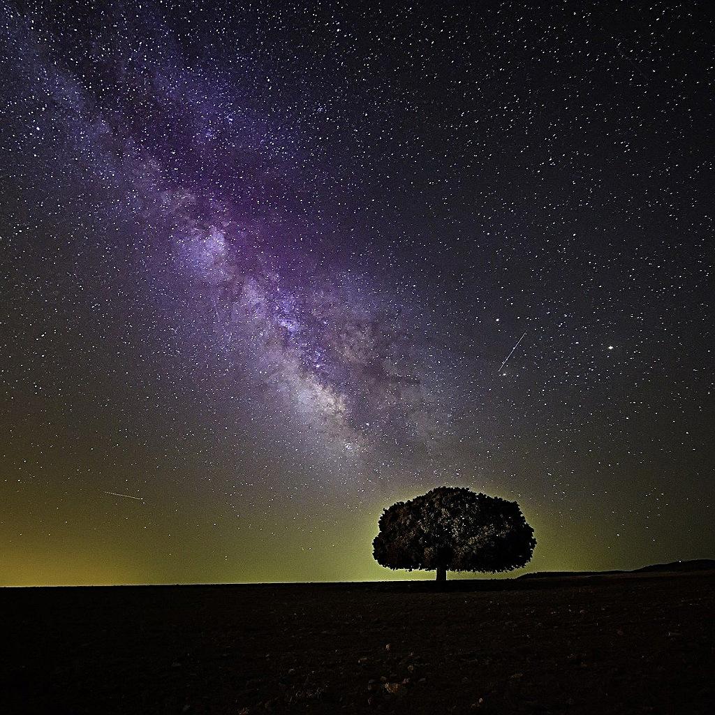 Vita intelligente nella Via Lattea