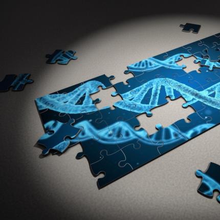 genoma modificato per prevenire le malattie cardiache