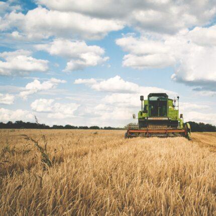Agricoltura sociale da valorizzare