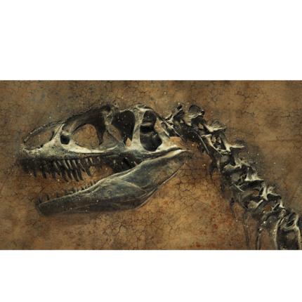 Cancro diagnosticato in un dinosauro per la prima volta