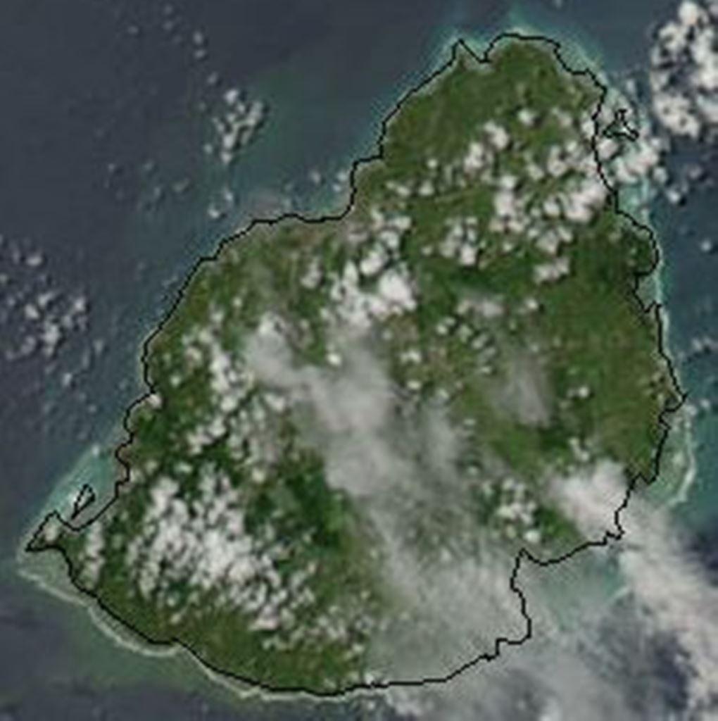 Isole Mauritius in pericolo ecologico foto