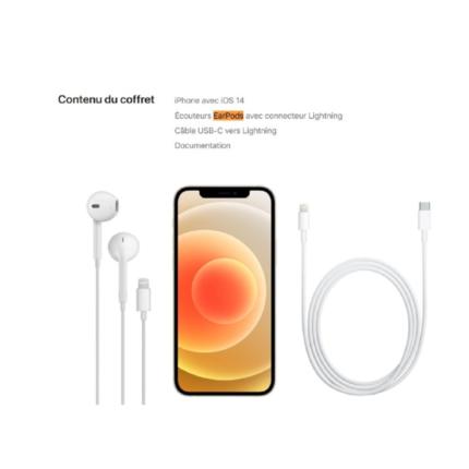 EarPods inclusi negli iPhone 12, ma solo in Francia