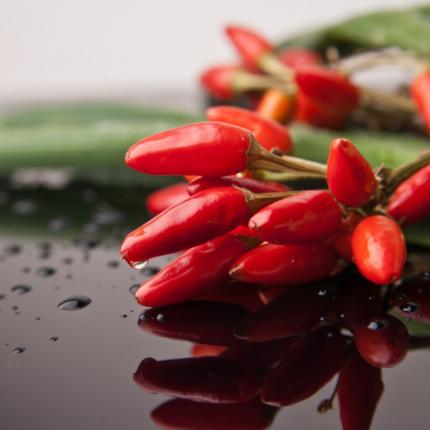 effetti benefici del peperoncino