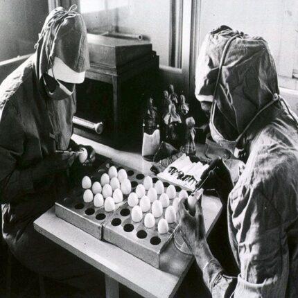 efficacia vaccino pfizer - BioNtech