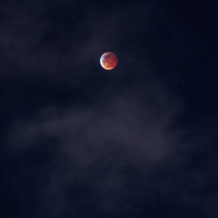Luna e stelle del 2021