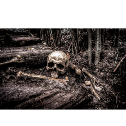 Morte nel Medioevo: frate schiacciato dal carro e altri decessi comuni, le ultime ricerche