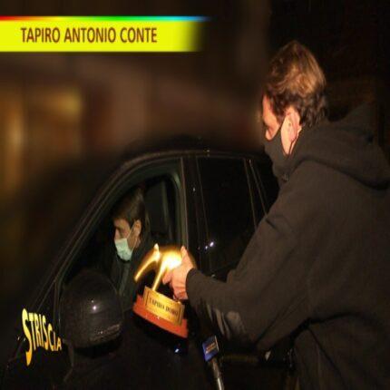 Tapiro d'oro a Conte