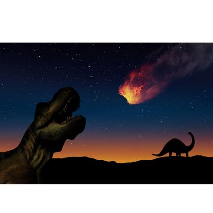 Quali sono state le cause d'estinzione dei dinosauri?